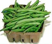 bush-beansfinal2