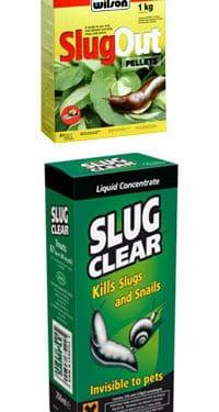 Metaldehyde Snail Baits: