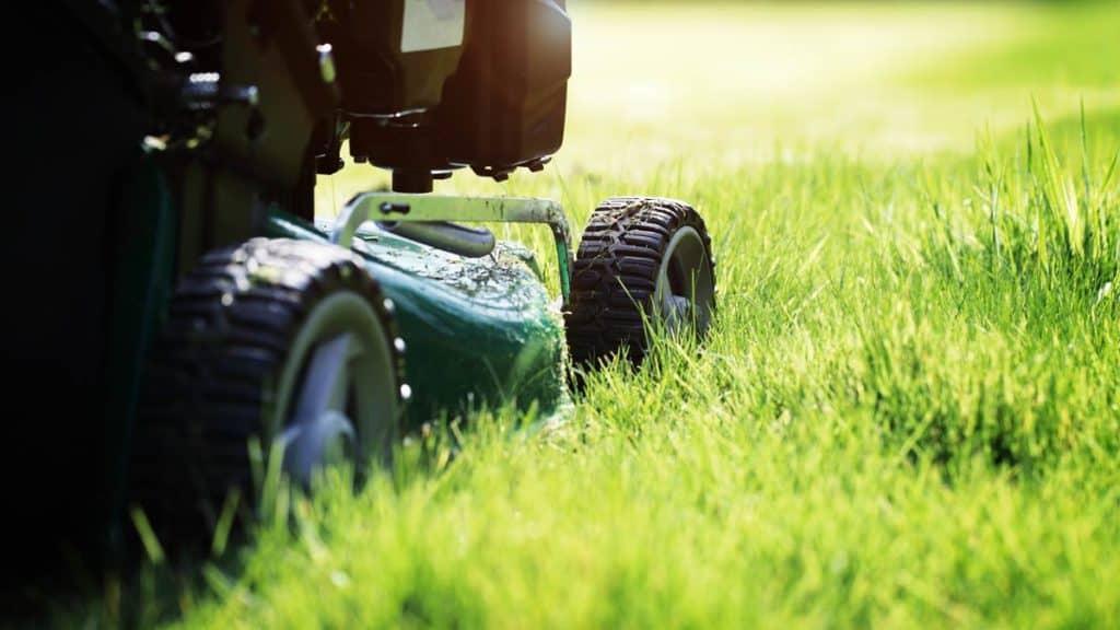 10 Best Self Propelled Lawn Mower Weekend Gardener
