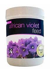 african-violet-pot4