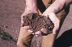 soil moisture dry