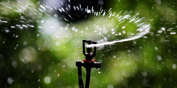 Best Sprinkler Heads