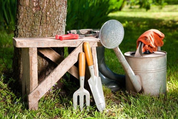 How-To-Grow-Garlic-Indoor-garden-tools