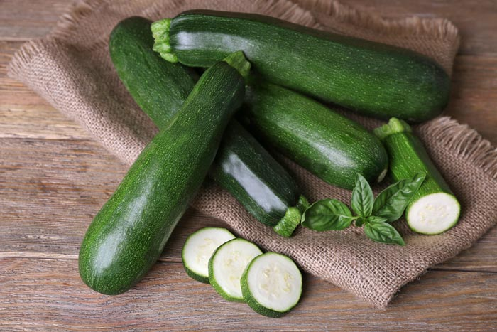 How-To-Grow-Zucchini-on-A-Trellis-Growing