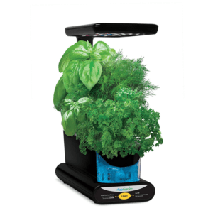 AeroGarden Sprout LED - Black