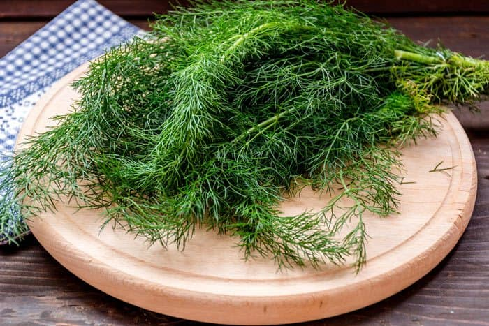 And-Store-It-For-Later-Use-what-is-dill