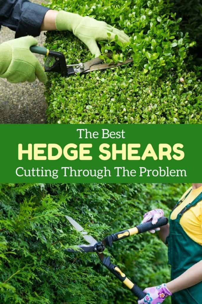 Best-Hedge-Shears-3