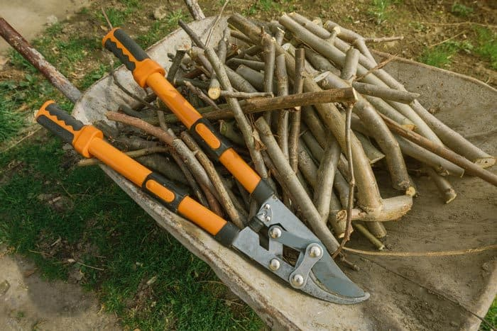 Best Loppers Materials