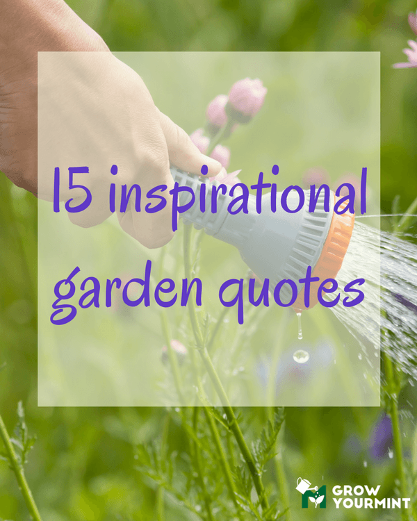15 Inspirational Garden Quotes To Make Your Day