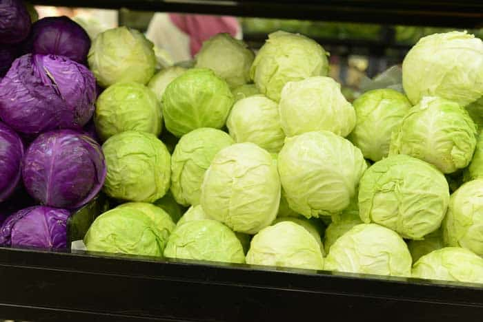 how-to-store-cabbage-cabbage
