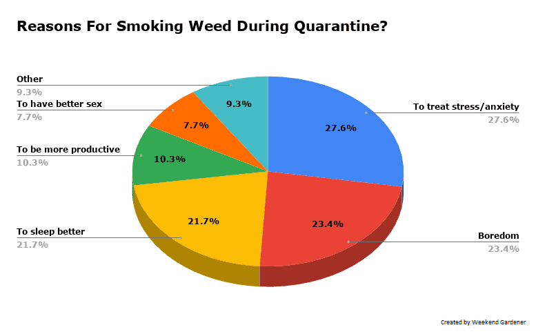 Mains Reasons For Smoking Weed During Quarantine