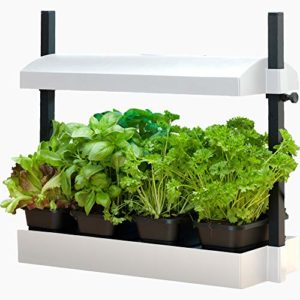 Future Harvest Developer SBL 1600200 Grow Light Garden, White (ECO-FRIENDLY)